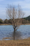 La splendeur du grand lac avant moi Photo stock