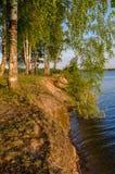 La sponda del fiume su una sera di estate Immagine Stock