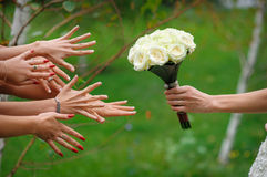 La sposa allunga un mazzo Immagini Stock