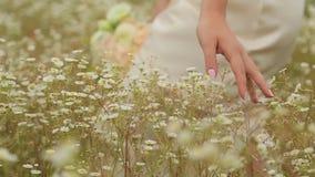 La sposa che cammina sulla tenuta del giacimento di fiore fiorisce video d archivio