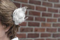 La sposa con un bianco è aumentato fotografia stock libera da diritti