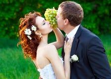 La sposa e lo sposo Immagine Stock Libera da Diritti