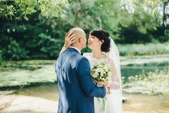 La sposa e lo sposo che abbracciano sulla riva del lago Immagini Stock Libere da Diritti