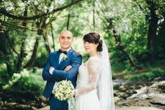 La sposa e lo sposo che abbracciano sulla riva del lago Fotografia Stock