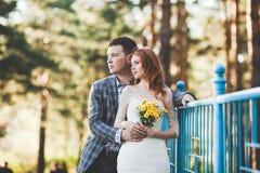 La sposa e lo sposo che posano vicino al ponte blu Immagini Stock