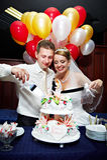 La sposa e lo sposo hanno tagliato la torta di cerimonia nuziale Immagini Stock