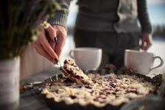 La sposa e lo sposo hanno tagliato la torta nunziale nell'aria aperta di piastra metallica della latta nell'inverno sulla costa d Immagine Stock Libera da Diritti
