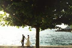 La sposa e lo sposo romantici delle coppie della persona appena sposata al tramonto tirano vicino al Se Immagini Stock