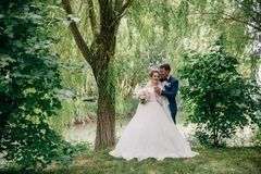 La sposa e lo sposo stanno posando contro lo sfondo degli alberi e di uno stagno Un uomo abbraccia il suo caro da dietro e tiene fotografia stock libera da diritti
