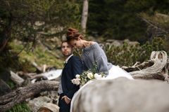 La sposa e lo sposo sui precedenti di una torrente montano Immagine Stock