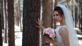 La sposa sta vicino ad un albero nella foresta e la tiene per consegnare la corteccia video d archivio