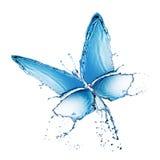 La spruzzata dell'acqua buttefly ha isolato Fotografia Stock Libera da Diritti
