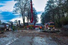 La squadra del vigile del fuoco taglia un albero abbattuto nella via Fotografie Stock Libere da Diritti