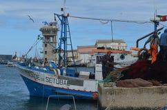La squadra di un seiner di borsa raccoglie le sue reti nel porto di pesca di Olhao, Algarve, Portogallo del sud immagine stock libera da diritti