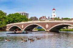 La squadra leggera cremisi di Harvard che pratica per una corsa in Th Fotografia Stock