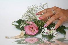 La squisitezza dei fiori Fotografia Stock