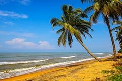 La Sri Lanka Fotografie Stock