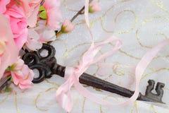 la stagione calda del cuore di chiave del fiore di ciliegia della molla fiorisce il rosa Fotografie Stock