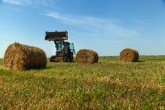 La stagione del raccolto nei campi, mucchio di fieno Fotografia Stock Libera da Diritti