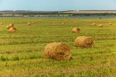 La stagione del raccolto nei campi, mucchio di fieno Immagine Stock Libera da Diritti