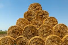 La stagione del raccolto nei campi, mucchio di fieno Fotografie Stock