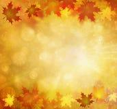 La stagione soleggiata di autunno lascia il fondo royalty illustrazione gratis