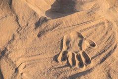 La stampa della palma sulla sabbia asciutta Immagini Stock