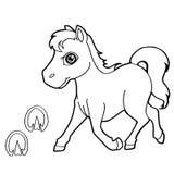La stampa della zampa con coloritura del cavallo impagina il vettore Fotografie Stock