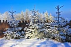 La station de sports d'hiver de montagne Images libres de droits