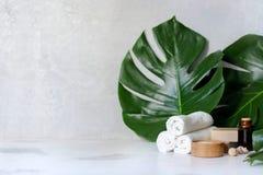 La station thermale et les traitements de massage sur le blanc, le monstera de marbre de fond part photographie stock