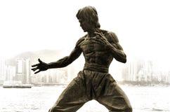 La statua di Bruce Lee Immagini Stock