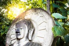La statua di pietra della testa Buddha con permesso verde ed il sole si svasano, tailandese Fotografie Stock Libere da Diritti