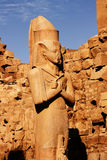 La statua di Ramses Fotografie Stock