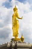 La statua dorata rispettabile di Buddha Stare all'aperto nella b fotografie stock libere da diritti