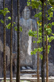 La statue de haut de Bouddha de 15 mètres émerge de la région boisée chez Buduruwagala, près de Wellawaya dans Sri Lanka central Images stock