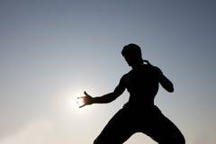 La statue de la lie de Bruce avec l'action du soleil à Hong Kong Images stock