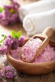 La stazione termale con sale ed il trifoglio di erbe rosa fiorisce Fotografie Stock Libere da Diritti