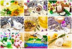 La stazione termale ha messo con l'olio dell'aroma, sale marino, fiori, lavanda, piante, rimorchio Immagine Stock Libera da Diritti