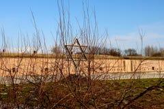 La stella del campo di concentramento di David Theresienstadt immagini stock
