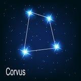 La stella di corvo della costellazione nel cielo notturno. illustrazione vettoriale