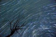 La stella trascina il timelapse Fotografia Stock