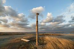 La steppe criméenne Photographie stock