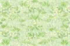 La stevia ed altra piantano il fondo più blu con lo spazio del testo per il concetto naturale sano dell'alimento Immagine Stock Libera da Diritti