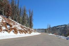 La strada al parco nazionale in California U.S.A. Immagine Stock