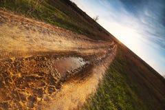 La strada, andante sul campo al tramonto Immagine Stock