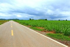 La strada asfaltata vuota diritta lunga o strada rurale Immagini Stock Libere da Diritti