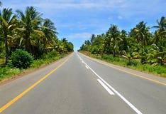 La strada attraverso la giungla. Fotografia Stock