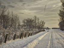 La strada campestre ad alba Immagini Stock