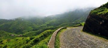 La strada del ciottolo intreccia una montagna nebbiosa Immagini Stock
