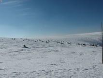 La strada del paesaggio di vista della neve del cielo del sole fotografia stock